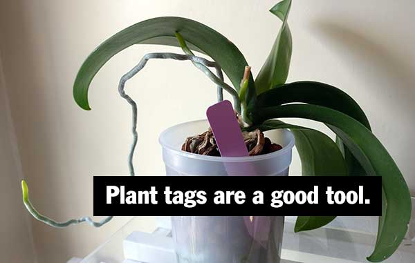 Plant tags are a good tool